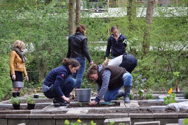 Teamdag: aanleg belevingstuin